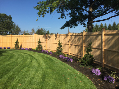 The privacy fencing adds a necessary sense of enclosure and screens out the adjacent parking lots.