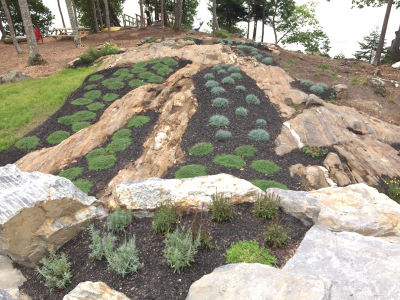 The exposed ledge below is planted with hundreds of flowering groundcover perennials.